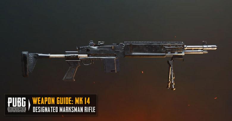 PUBG Tier List MK14