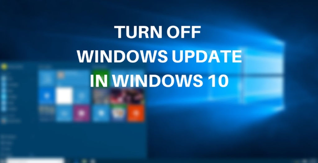 Disable the Auto Windows Update Service