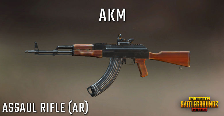 PUBG Tier List AKM